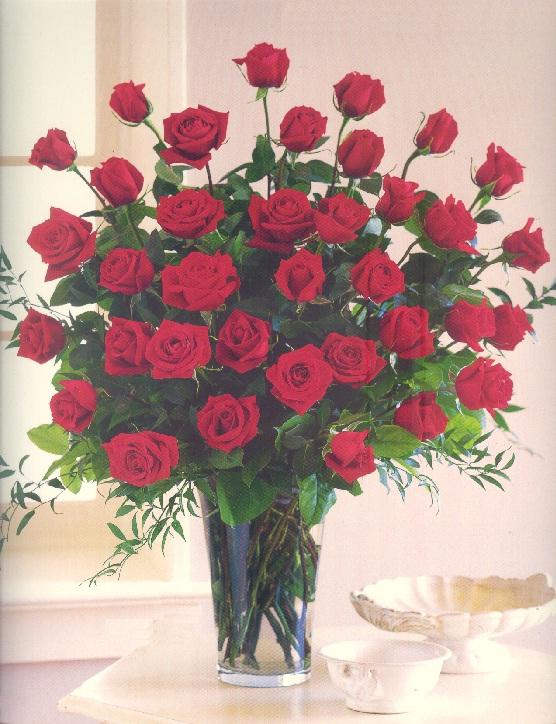 Love 'n Roses