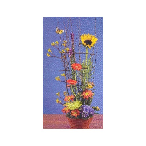 Craft Garden Collection