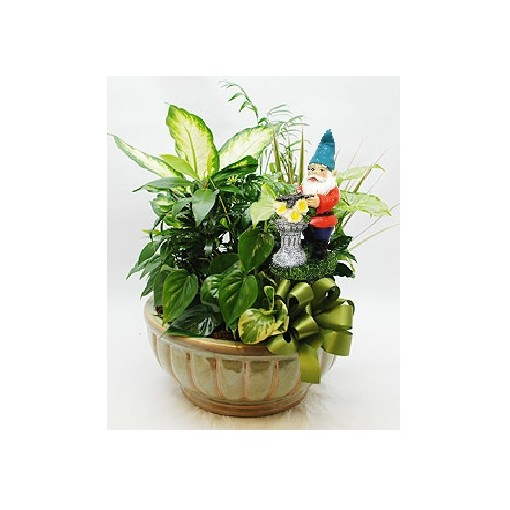 our gnome home dish garden planter - Dish Garden Plants