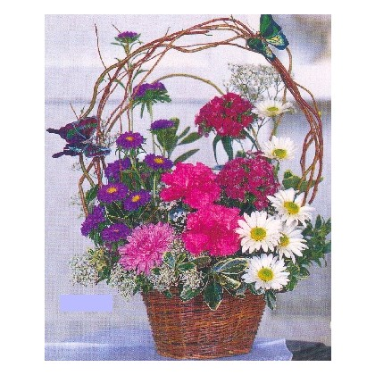 Butterfly Wishes Basket