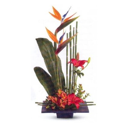 Tropical Medicine Bouquet