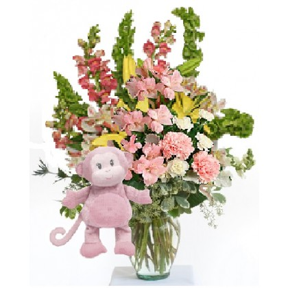 "Our ""Pretty Happy...with Toodles""  Baby Girl Bouquet"