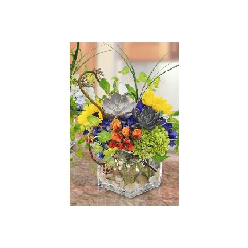 FloraDora #18 - Earth and Sky Fresh Succulent Arrangement