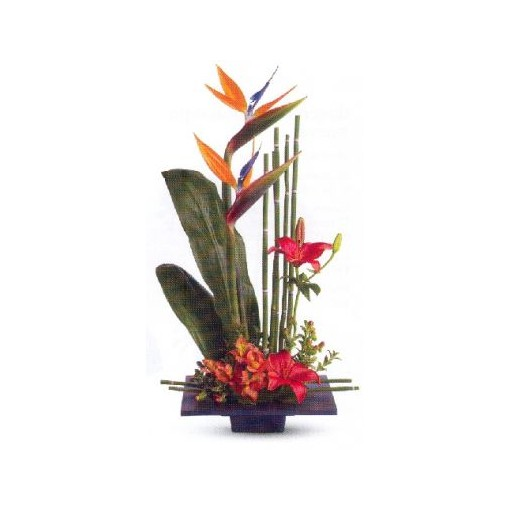 Tropical Medicine Bouquet