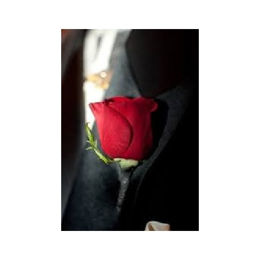Boutonniere - Red Rose
