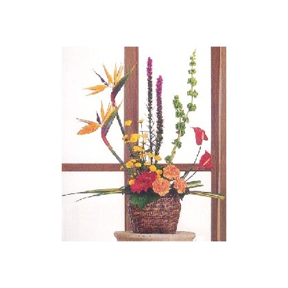 Our Vivid Tropical Arrangement