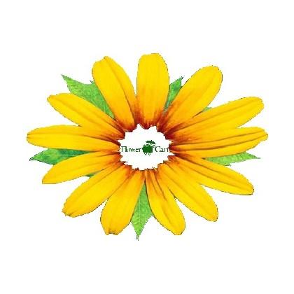 """""""Fresh Floral Mix"""" Vase Arrangement"""