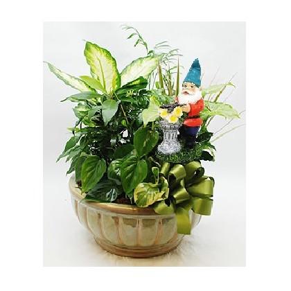 """Our """"Gnome Home"""" Dish Garden Planter"""